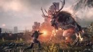 The Witcher 3: Wild Hunt screen 4