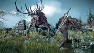 Witcher 3 Dev Responds to report that game will probably not run In 1080p on PS4, Xbox One screen 5