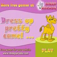Dress up pretty camel