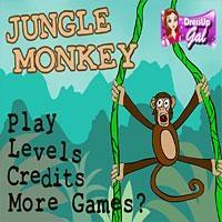 Jungle Monkey